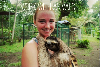 Work with animals placement internship abroad